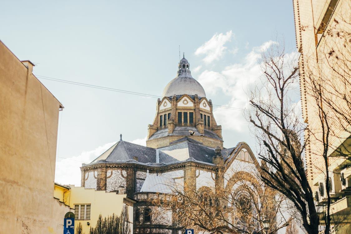 Novi Sad-blog-3790