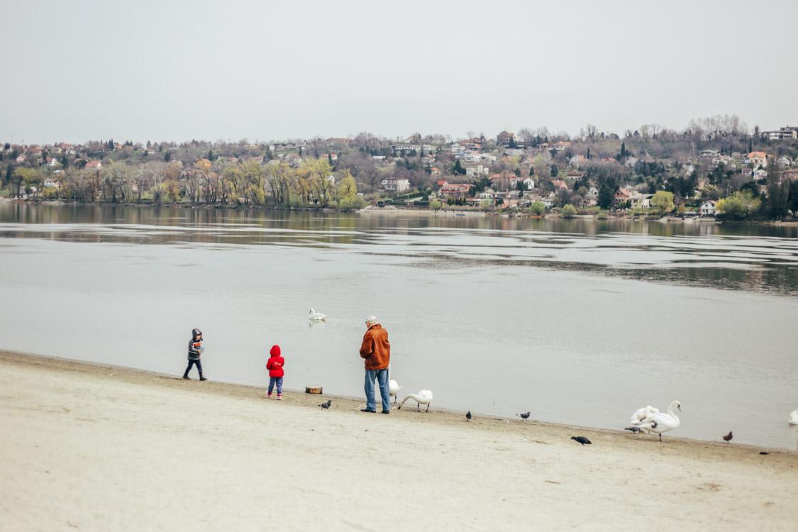 Novi Sad-blog-3872