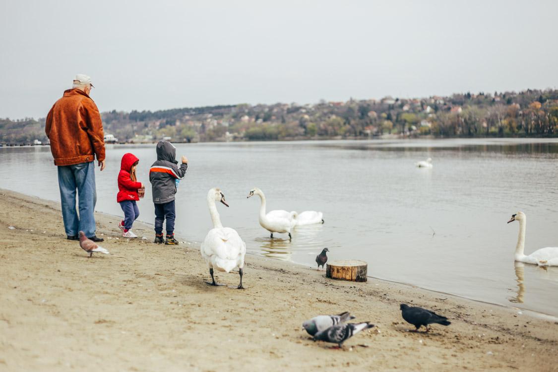 Novi Sad-blog-3883