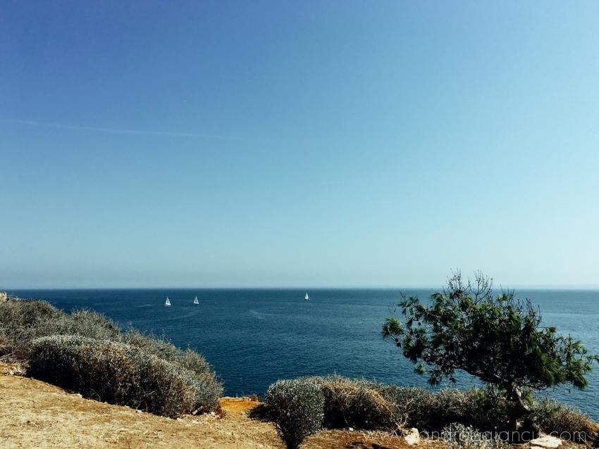 lisbon_andreea-iancu_blog-79